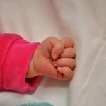 une petite main
